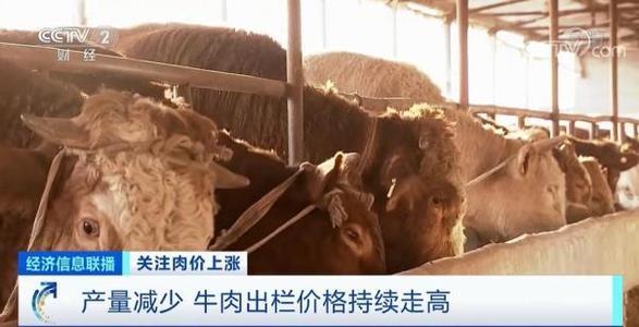 """临近春节,肉价""""涨""""声一片!""""牛魔王""""""""羊贵妃""""""""猪坚强""""都来了!啥原"""