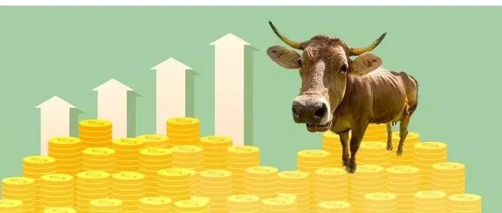 牛价要涨,持续3年.......